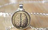Collar de cerebro anatómico para psicólogos y médicos