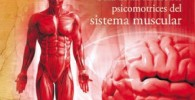 Enciclopedia del cuerpo: Guía de las funciones psicomotrices del sistema muscular (Deportes)