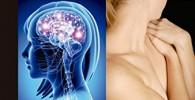 El cuerpo recuerda: La psicofisiología del trauma y el tratamiento del trauma