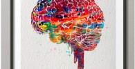 Acuarela Cerebro Póster Lienzo Pintura Anatomía Médica Arte De La Pared Imagen Decoración