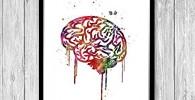 Anatomía del cerebro con impresión de acuarela médica para decoración de pared de la oficina del psicólogo
