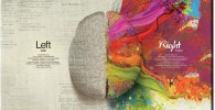 Lienzo cerebro derecho e izquierdo