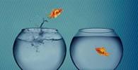 Conocer a través del cambio: La evolución de la terapia breve estratégica